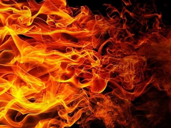За сутки в Буряти не обнаружено новых лесных пожаров