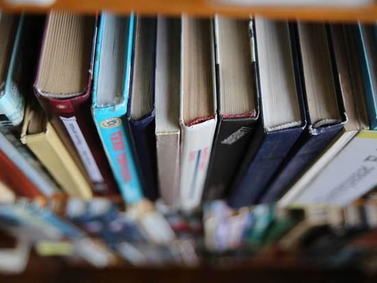 Волгоградский писатель рассказал, как приучить детей к чтению