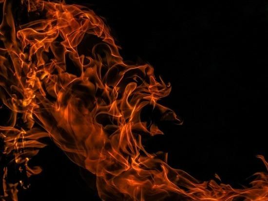 Пожилая женщина и кот погибли в пожаре на Малоохтинском
