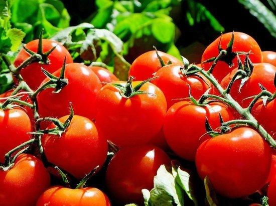 Около 2,3 тонн овощей произвели в Псковской области