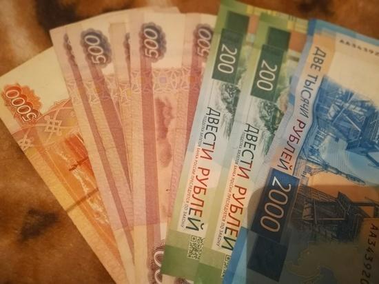 В Соль-Илецке гостья украла деньги из кошелька хозяев