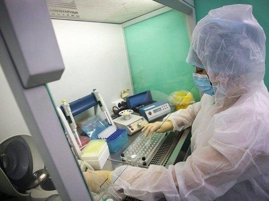 В Ростовской области среди новых заразившихся COVID-19 наибольшее количество граждан  в возрасте до 65 лет