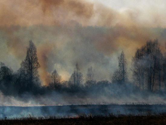 В Свердловской области загорелся перевал Дятлова