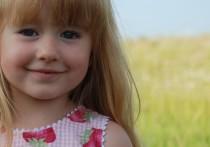 В Хакасии осудят сельчанина, который пытался изнасиловать пятилетнюю девочку