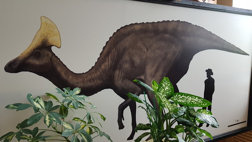 dba65c89443f5527fe88f3d50f94ae29 - Ученый палеонтологического музея Болотский: кость динозавра сравнима со скрипкой Страдивари