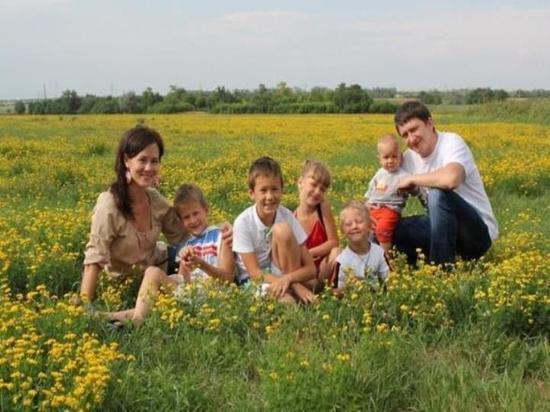 Больше всего земельных участков многодетные семьи получили в Серпухове