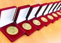 В Чехове вручили больше девяноста медалей