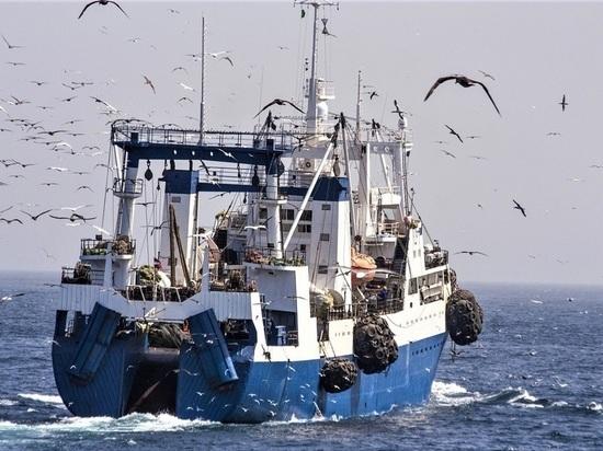 В Магаданской областной думе рассказали о достижении рыболоведческой отрасли в регионе