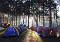 Несанкционированный палаточный лагерь для детей переместился в Хакасию из соседнего региона