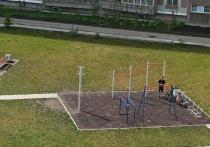 В Новосибирске пенсионерки разорили спортивную площадку во дворе