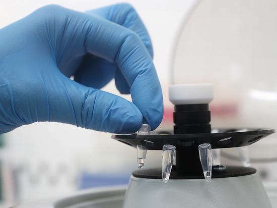 В Курской области 40 человек за сутки заболели коронавирусом