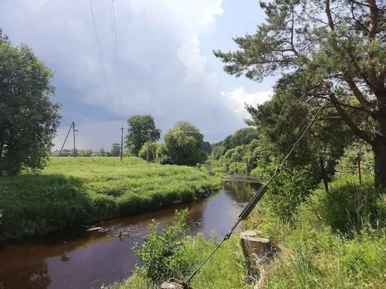 Труп годовалого малыша обнаружили в реке в Пустошкинском районе