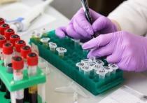 Германия: Переболевшие коронавирусом теряют антитела и могут заразиться повторно