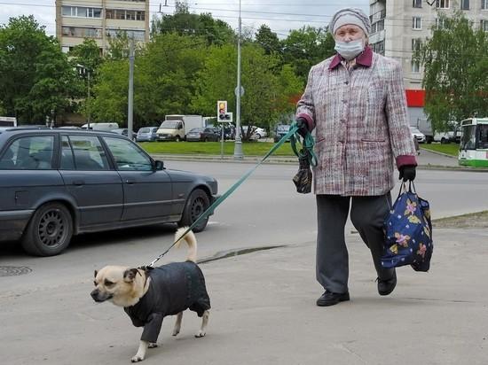 В ПФР разъяснили порядок перерасчета для работающих пенсионеров