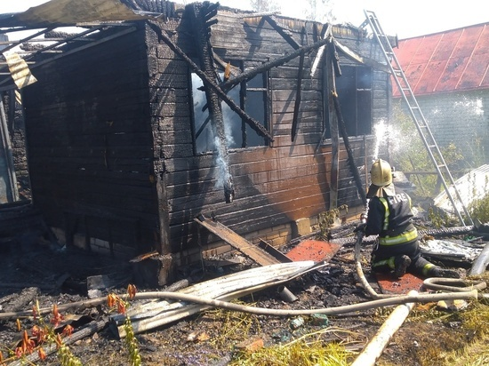 На пожаре в СНТ в Струнино пострадал мужчина