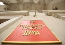 За мандаты депутатов Волгоградской областной думы поборются 5 партий
