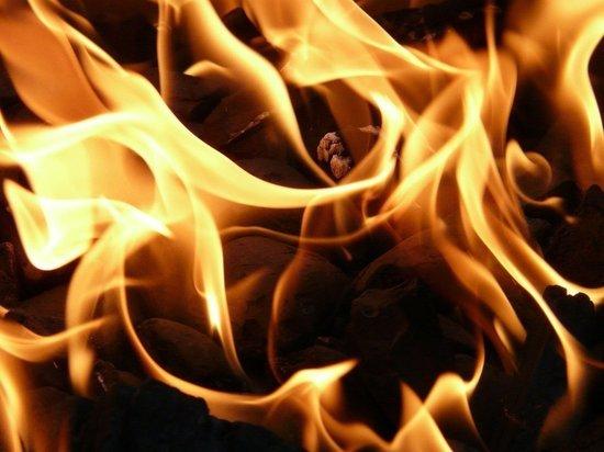 В Омске мужчина убил и сжег беременную женщину