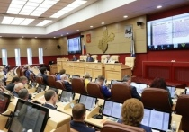 Без вины виноватые: решения сессии ЗС вызвали недовольство у комсомольцев