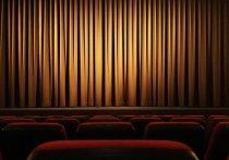 Семейные любительские театры покажут свои таланты вопреки пандемии