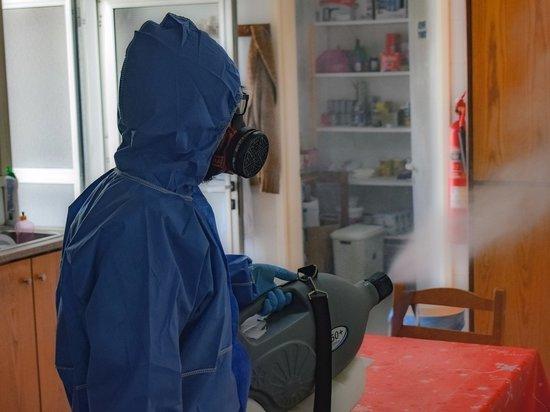 В Приморье объявлен карантин по африканской чуме свиней