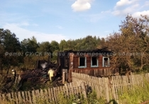 В Костромксой области мужчина погиб в пожаре