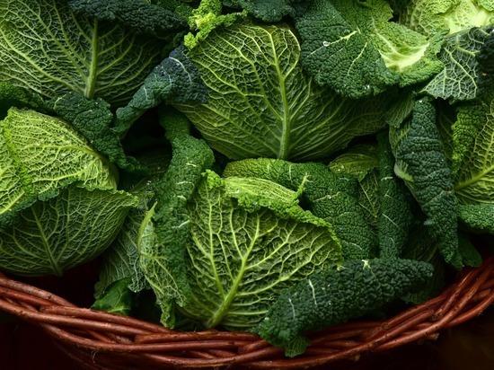 Ученые назвали «убивающие» коронавирус продукты