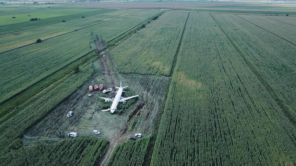 Семья из Тверской области рассказала, что пережила при посадке самолета, экстренно приземлившегося в кукурузном поле