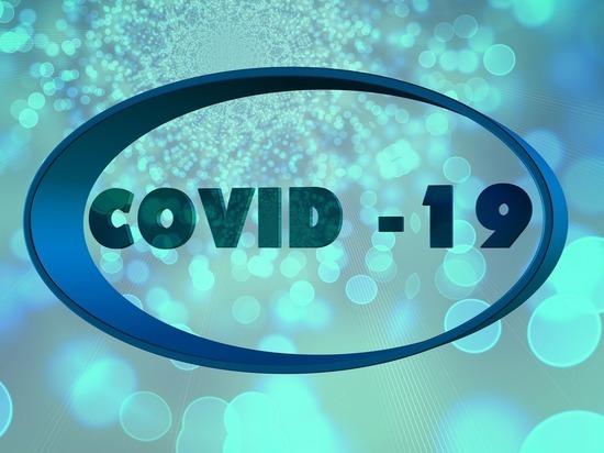 Германия: За истекшие сутки число заболевших Covid-19 увеличилось на 534 и перешагнуло 200 000 рубеж