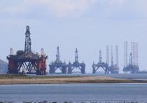 Низкие цены погубят ОПЕК: Россия устала от деспотизма нефтяного картеля