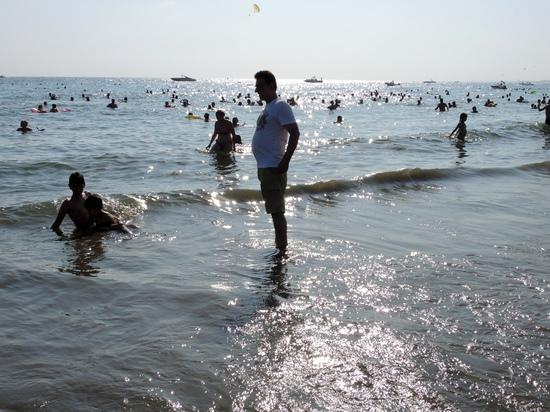 """В Сети призвали срочно """"открывать Абхазию и Турцию"""""""