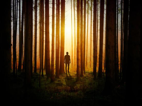 Раз гриб, два гриб: Как не заблудиться в лесу. Советы псковских спасателей и поисковиков