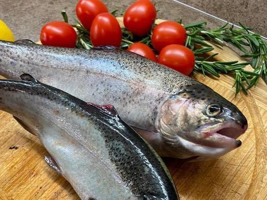 В Тюменской области стали выращивать больше рыбы