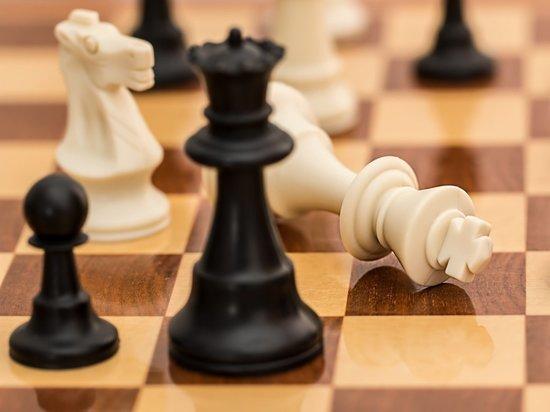 Южноуральцы активно играют в шахматы