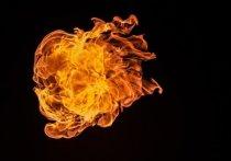 В Заводском горела девятиэтажка: есть погибшие и пострадавшие