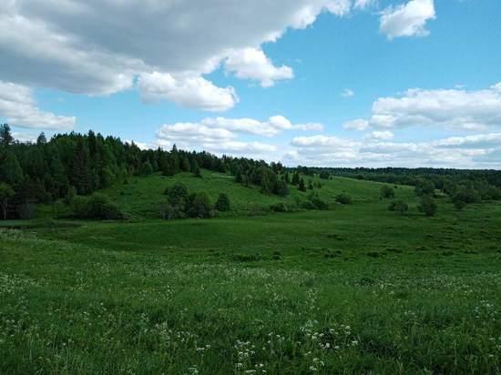 Около 1200 многодетных семей Вологодской области получили «земельный сертификат»