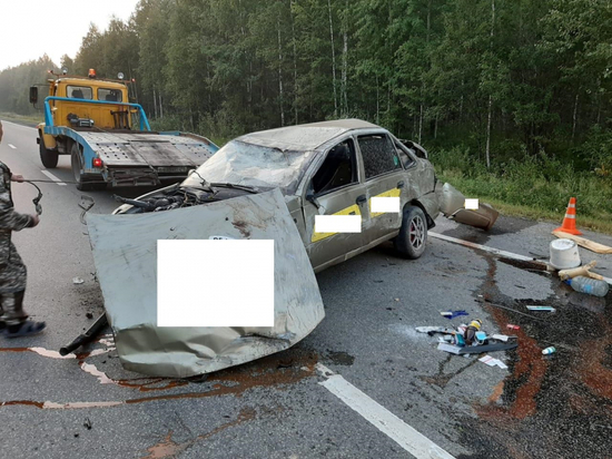 Малолетний пассажир такси получил тяжелые травмы в ДТП под Режом