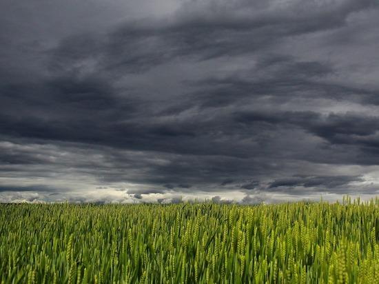 На юге Челябинской области до +36, местами ливни, грозы, град, шквалистый ветер