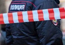 В квартире на Кутузовском проспекте убита 90-летняя доцент ВГИКа