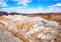 Суд обязал хозяина земли в Чехове выплатить 87 миллионов рублей