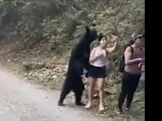 Медведь выскочил к туристам, сделал с ними селфи и убежал
