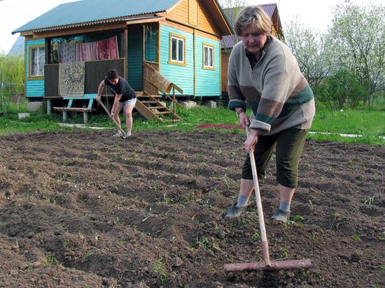 Огородная экономика России: ВВП страны падает рекордными темпами