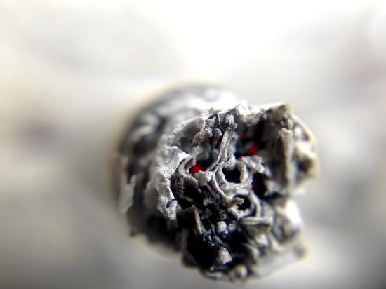 Госдума повысила штрафы за продажу табака и снюса несовершеннолетним