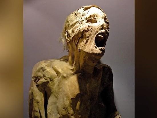 Египтологи раскрыли последнюю главную тайну кричащей мумии