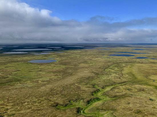 «Газпром нефть» и концерн «Шелл» будут разрабатывать кластер углеводородов на Гыданском полуострове