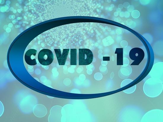 Германия: За истекшие сутки число заболевших Covid-19 увеличилось на 454