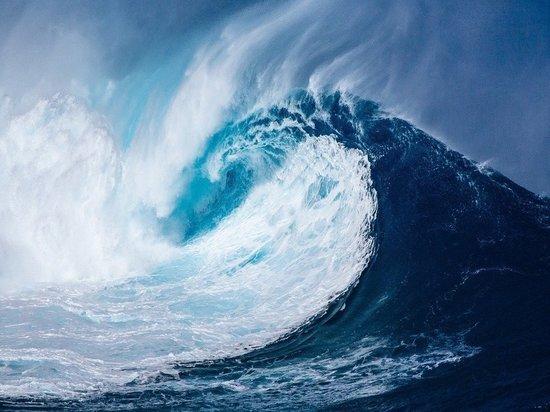 У берегов Аляски объявили угрозу цунами из-за мощного землетрясения