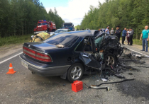 Уснул за рулем: названа предварительная причина смертельного ДТП под Ноябрьском