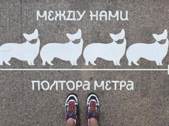 На остановках Тюмени появились рисунки с призывом к соблюдению социальной дистанции