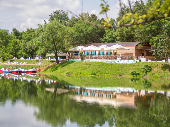 В хабаровском озере «Рица» распускаются священные цветы