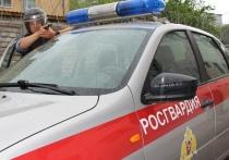 Росгвардейцы за день предотвратили несколько краж в Тверской области